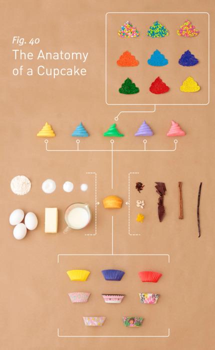 http://4.bp.blogspot.com/-H2pteQgg298/TYzIAoyrS8I/AAAAAAAAIlc/92pKPiEL-Fg/s1600/The_Anatomy_of_a_Cupcake.jpg