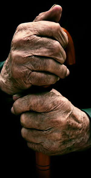 Hombres Ancianos Peludos Desnudos Gratis Galeria De Fotos Filmvz