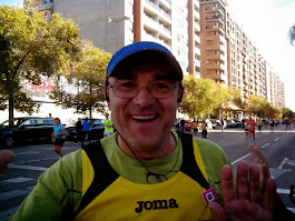 Marato de Valencia 2013