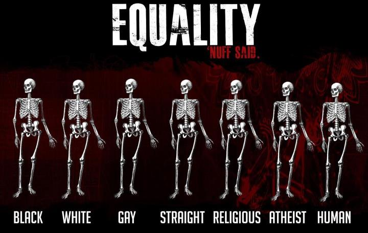 essay on the equality of human races