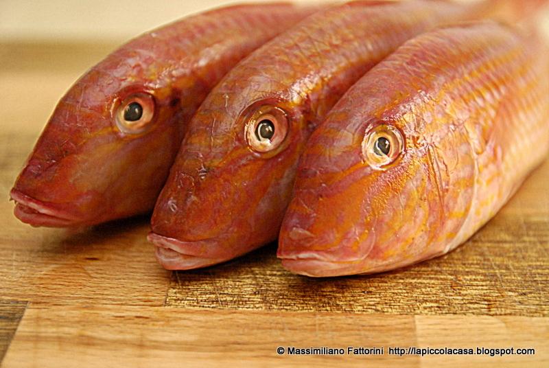La piccola casa il pesce triglie di scoglio alla piastra for Quanto vive un pesce rosso
