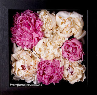 frame your wedding flowers preserved wedding flowers. Black Bedroom Furniture Sets. Home Design Ideas