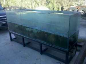 Giant aquariums december 2011 for 300 gallon fish tank for sale