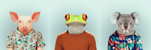 06-Artist-YAGO-PARTAL-Clothed-Animals-Pig-Frog-Koala