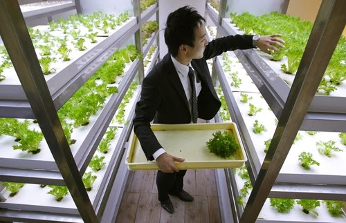 12-Urban-Farm-Building-Architects-Kono-Designs-Pasona-Group-www-designstack-co