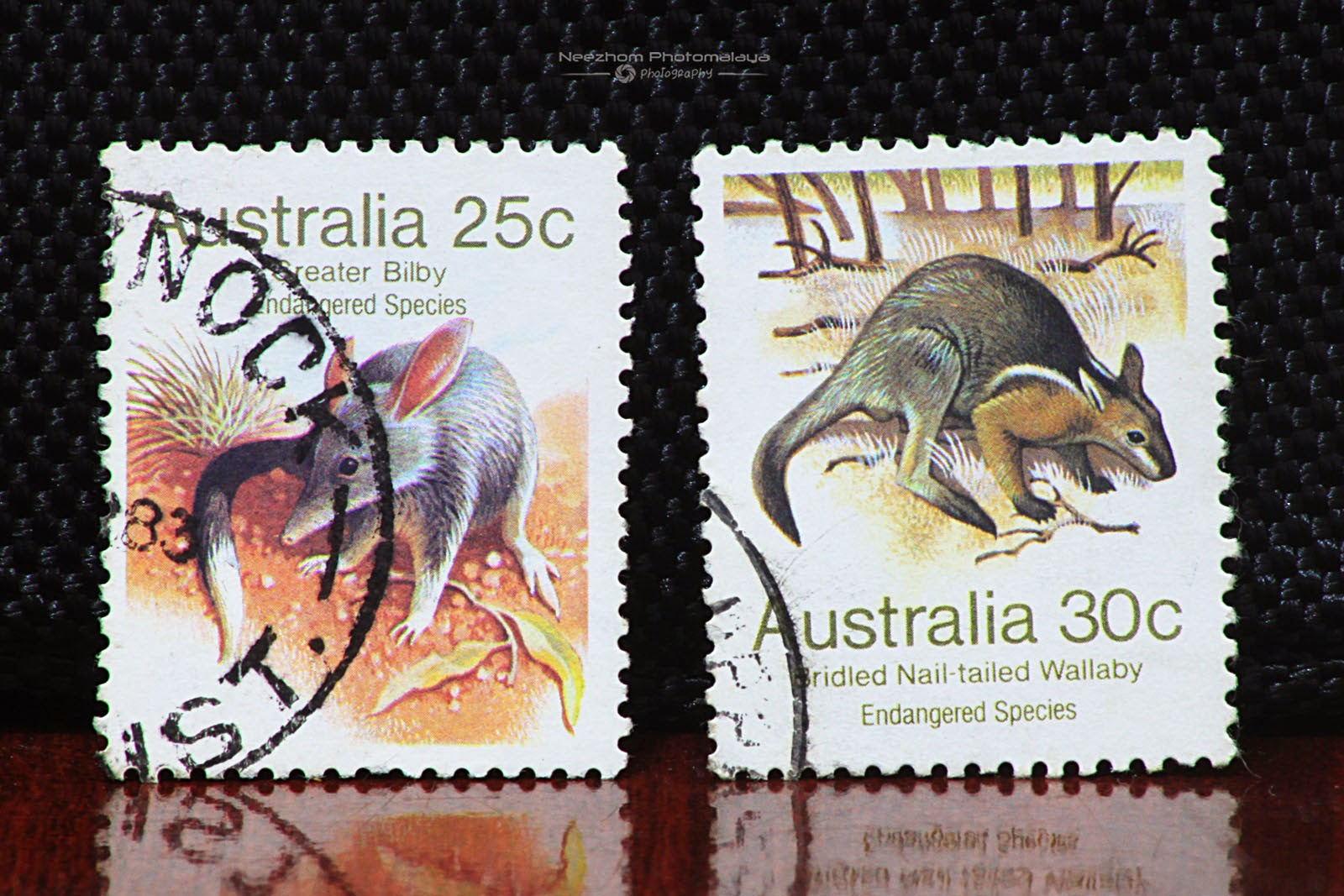 Australia 1981 Endangered Species - Greater Bilby 25 cents, Bridled Nail-tailed Wallaby 30 cents