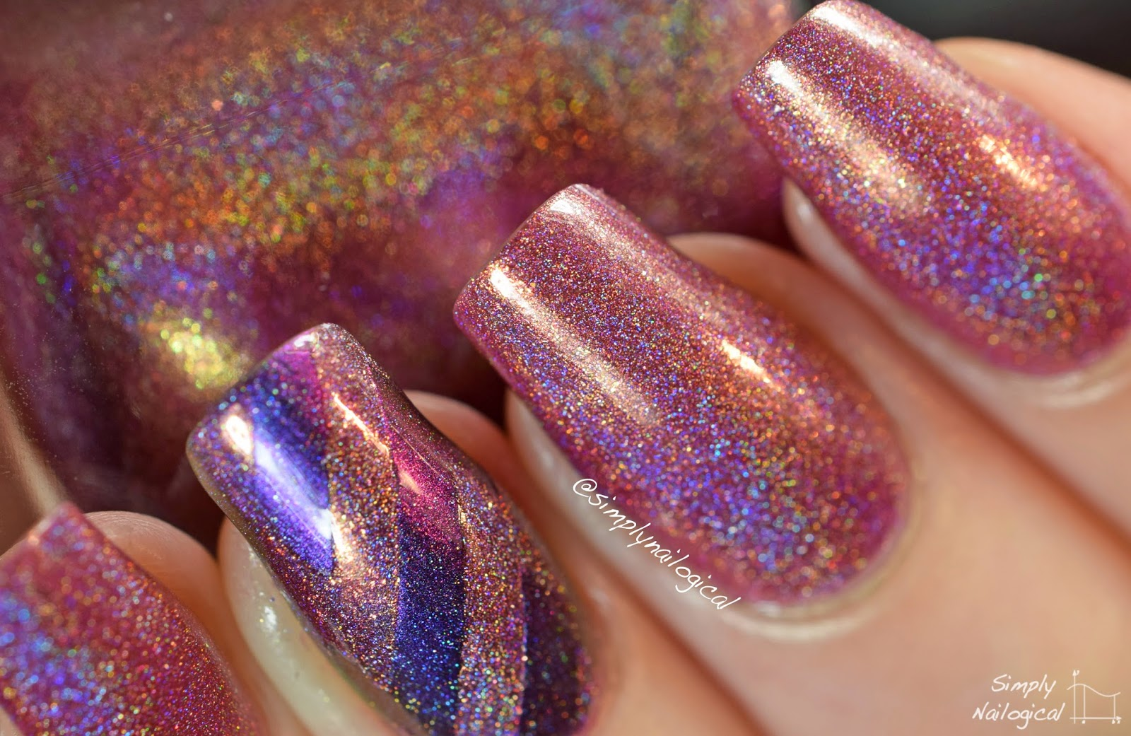 Champagne Blush - ILNP Fall 2014 collection