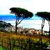Un Sogno  with a View - Le Vigne Di Raito, Raito (Sa)