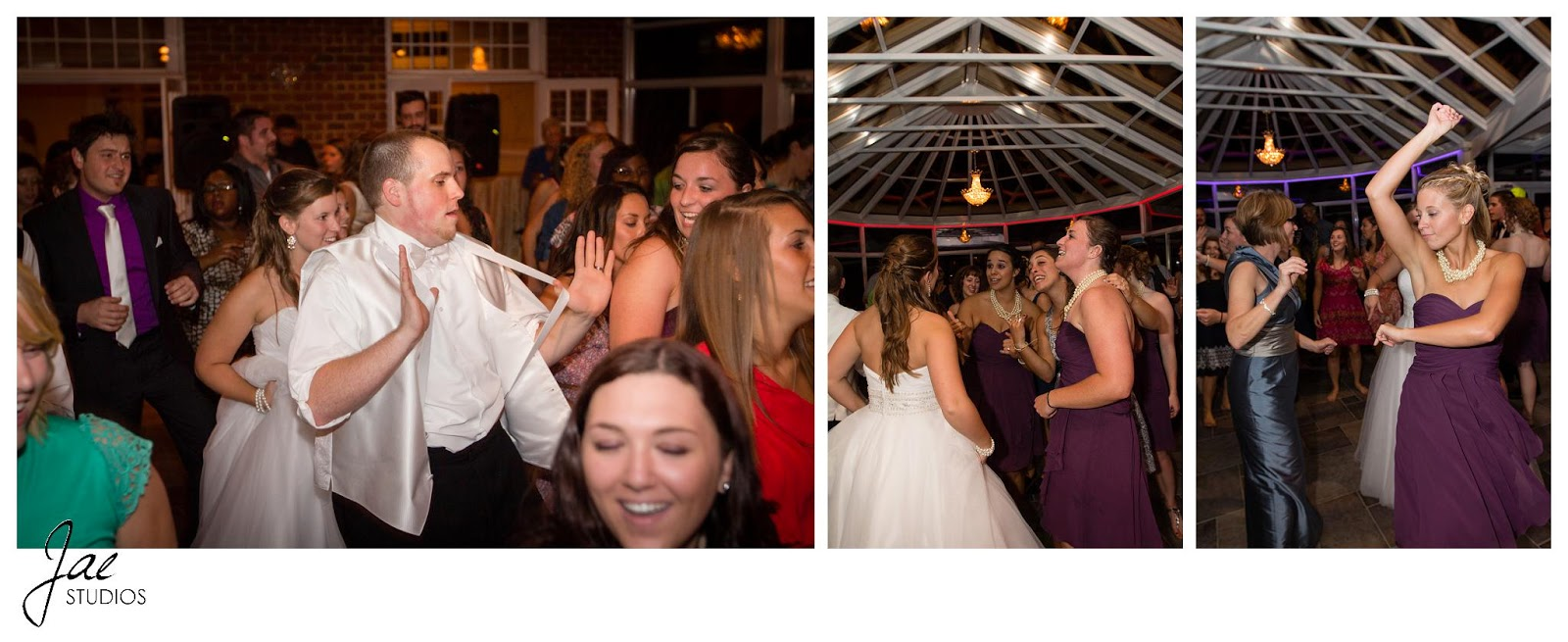 Jonathan and Julie, Bird cage, West Manor Estate, Wedding, Lynchburg, Virginia, Jae Studios, groom, bride, wedding dress, tuxedo, dancing, reception