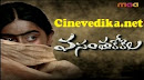 Watch Vasantha Kokila Telugu Daily Serial