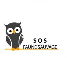 SOS Faune Sauvage