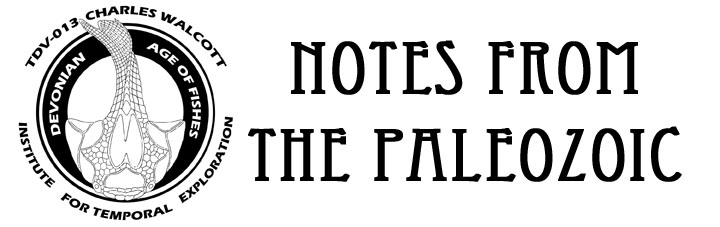 Notes from the Paleozoic