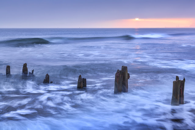 Beach groynes in the morning sun at Sandsend by Martyn Ferry Photography