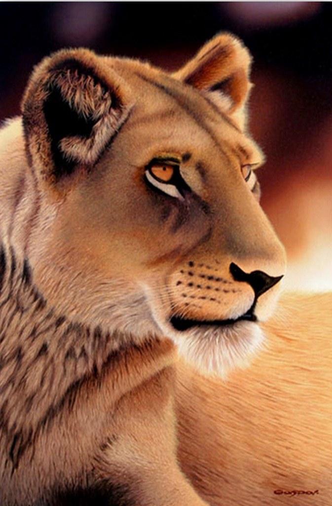 Cuadros modernos pinturas y dibujos animales salvajes for Pintura ligera de color topo