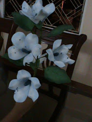 Flores Gloxineas  $10.000