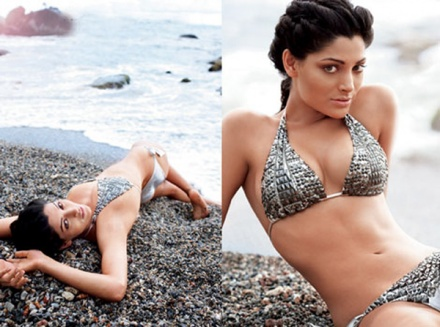 tena desae hot amp sexy bikini wallpapers and images songs