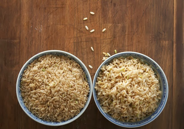 How To Make Super-Nutritious Germinated Brown Rice