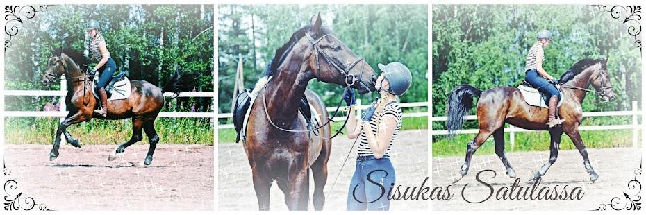 Sisukas Satulassa