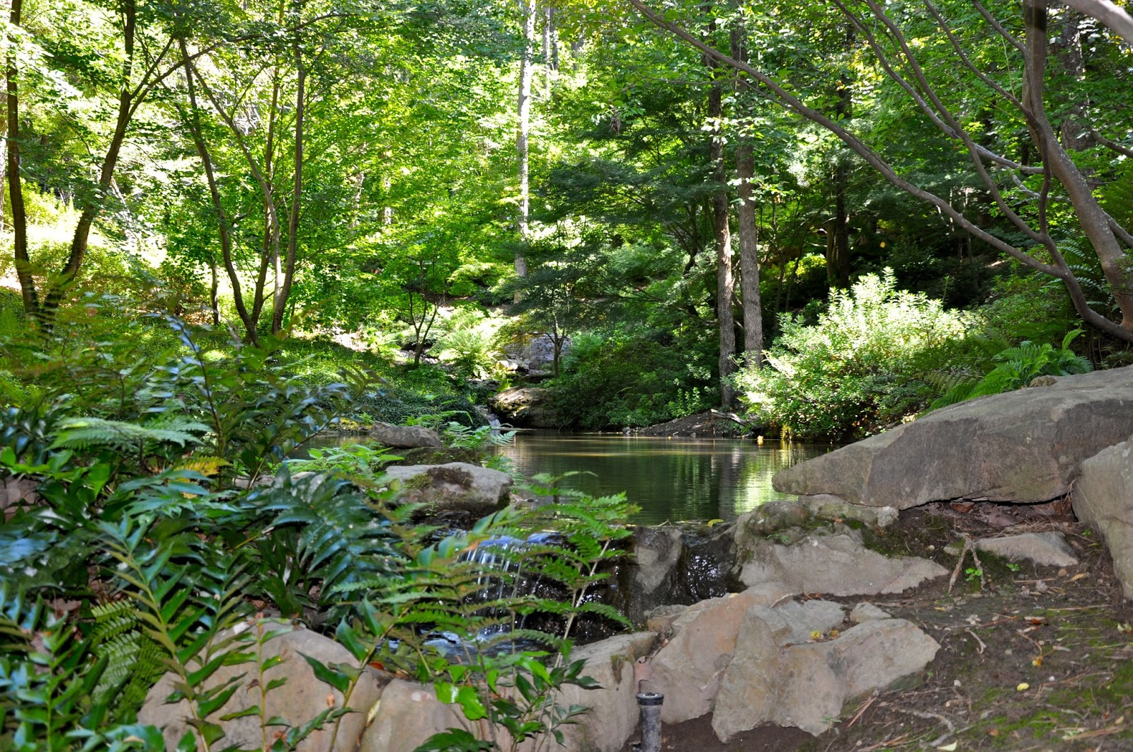Sunshine Nomads Hot Springs Arkansas Garvan Woodland Gardens