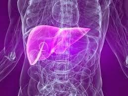 ปัญหามะเร็งตับ TNN2 BIM100APCO