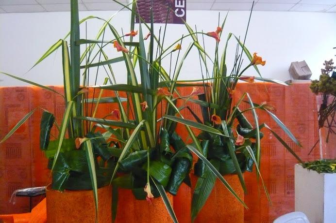 Curso de Arte Floral Segunda Edição loja Albano .