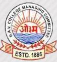 DAV International School Nerul logo