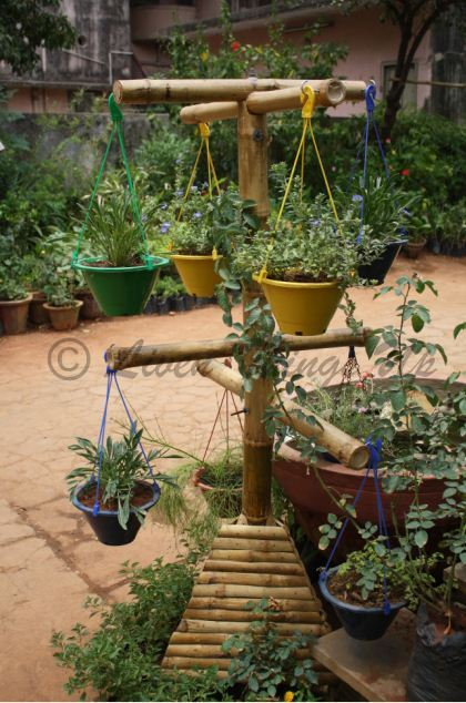 Vertical Garden - Hanging Pots