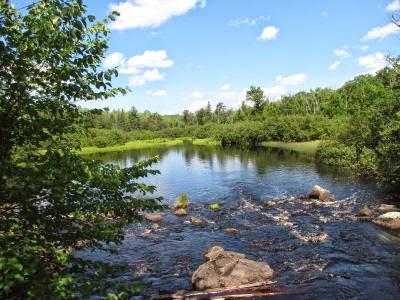 Braunsshweiller River Wiscosin