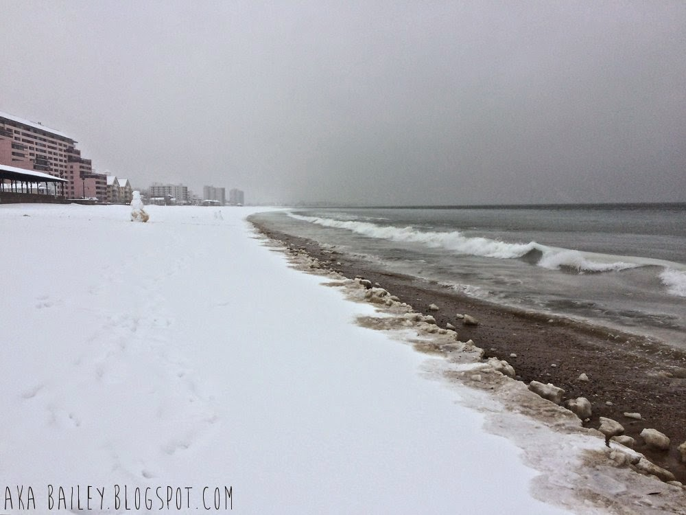 The shore at Revere Beach in the winter