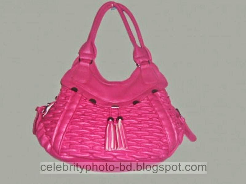 Latest+Fashionable+Vanity+Bag's+Photos+Collection+For+Modern+Generation+Girls+&+Ladies+2014 2015004