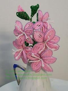 Beaded gladiolus