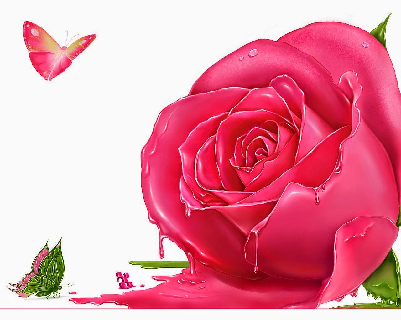 Beautiful Pink Rose Flowers Wallpaper With Butterfly