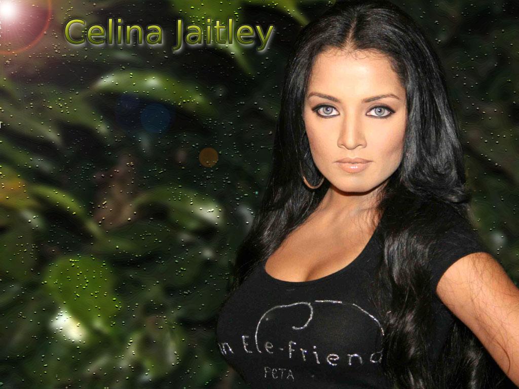http://4.bp.blogspot.com/-H7QL4y8MuDI/Tob0GzRjgkI/AAAAAAAAClY/cdloWfSXUiU/s1600/celina-jaitley_007.jpg