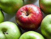 נפלאות התפוח