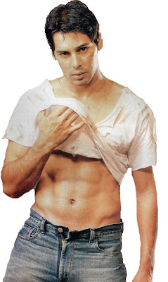 Dino Morea wallpaper