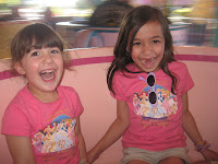 The Top 5 Dad Friendly Rides at WDW