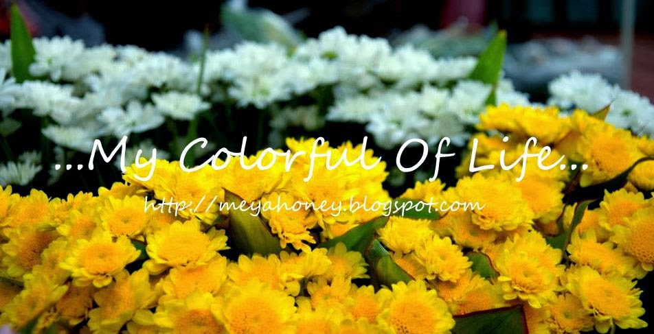 ~My CoLorFuL oF LiFe~