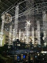 Nashville Opryland Hotel Christmas Lights