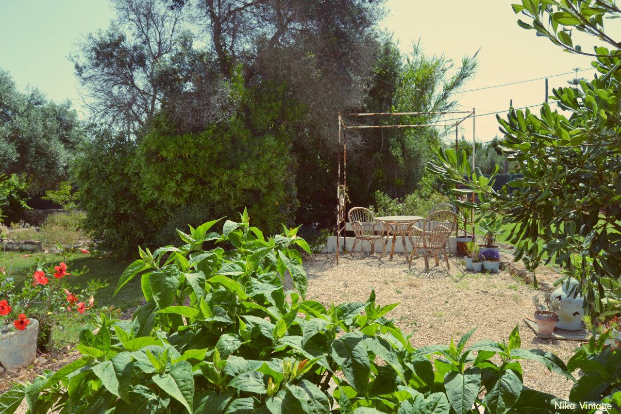 hoy compartimos, blog hop, jardin, menorca, vintage, decoracion, dosel cenador,