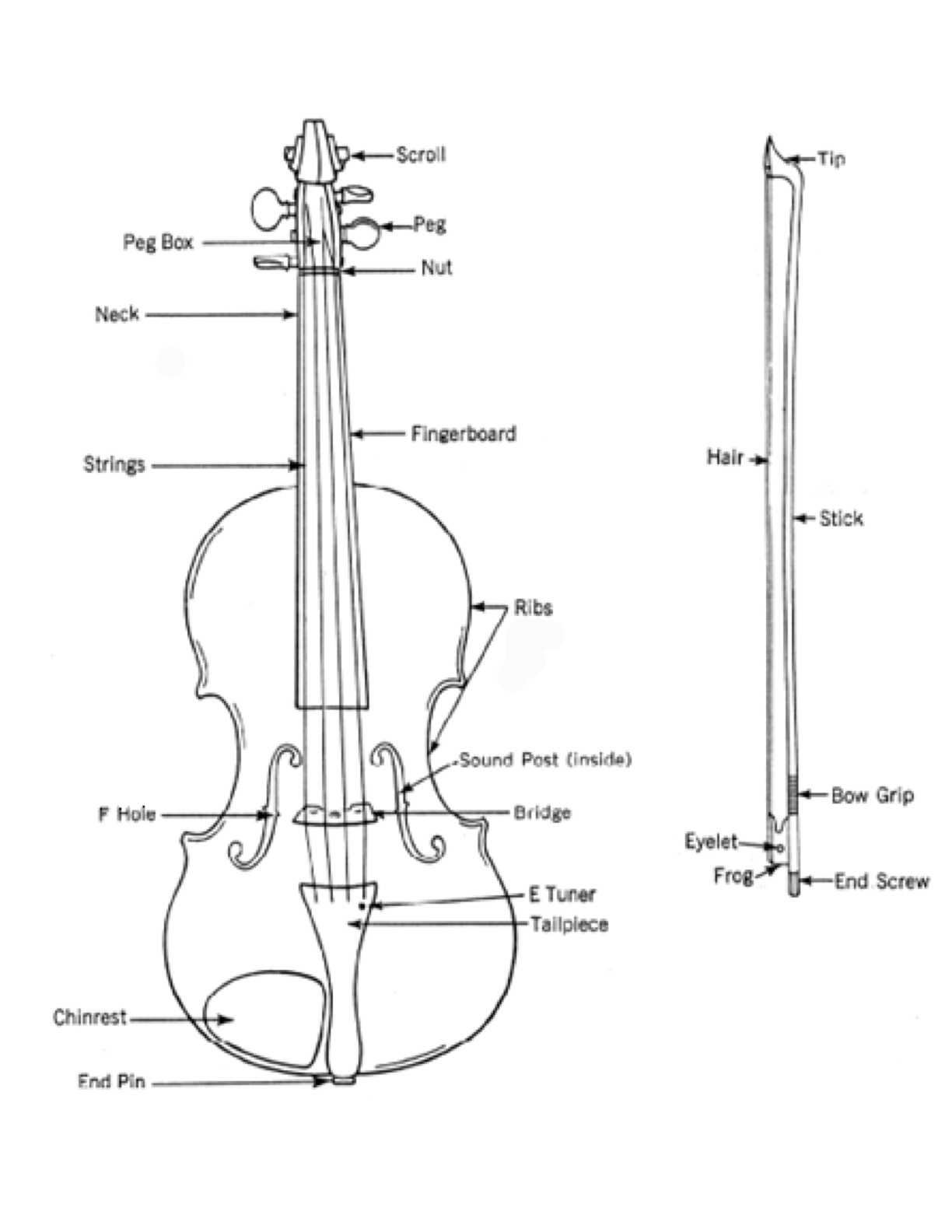 violin parts worksheet