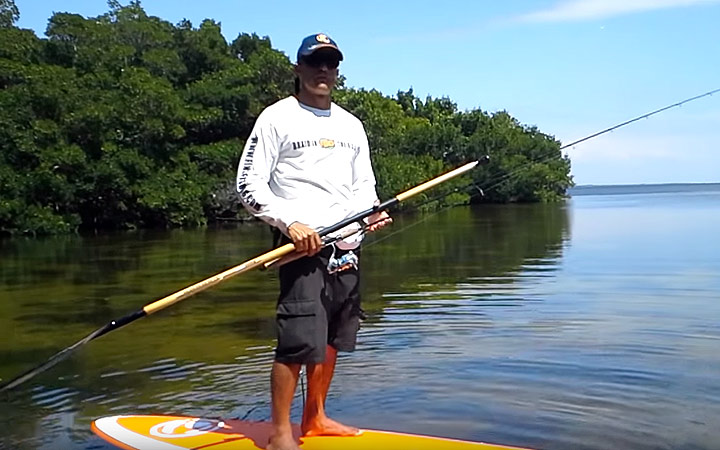 April Tampa Bay SUP Flats Fishing Report with Capt. Chris Camps