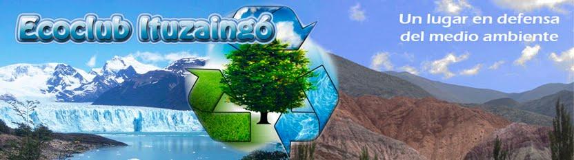 Eco Actualidad