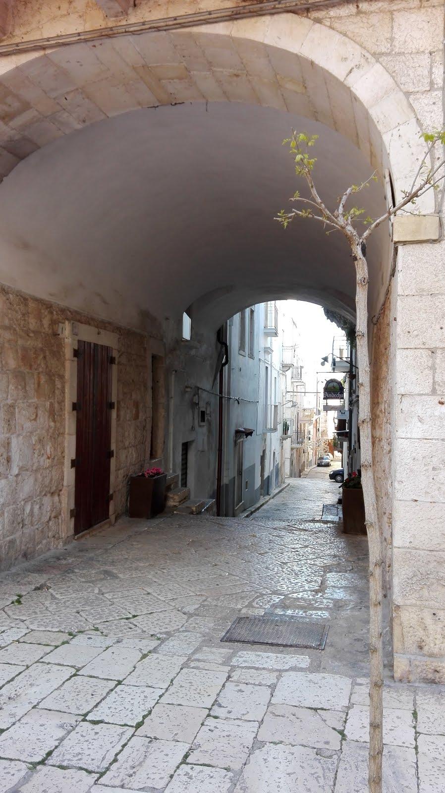 castellana grotte 5