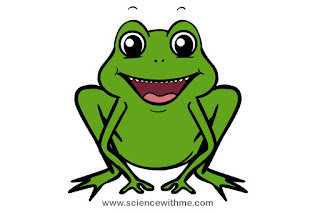 Frog Friendly Smiling Cartoon