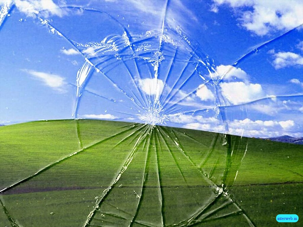 And new window will open with a full size view 640 x 480 - Funny Wallpapers New Wallpaper Design