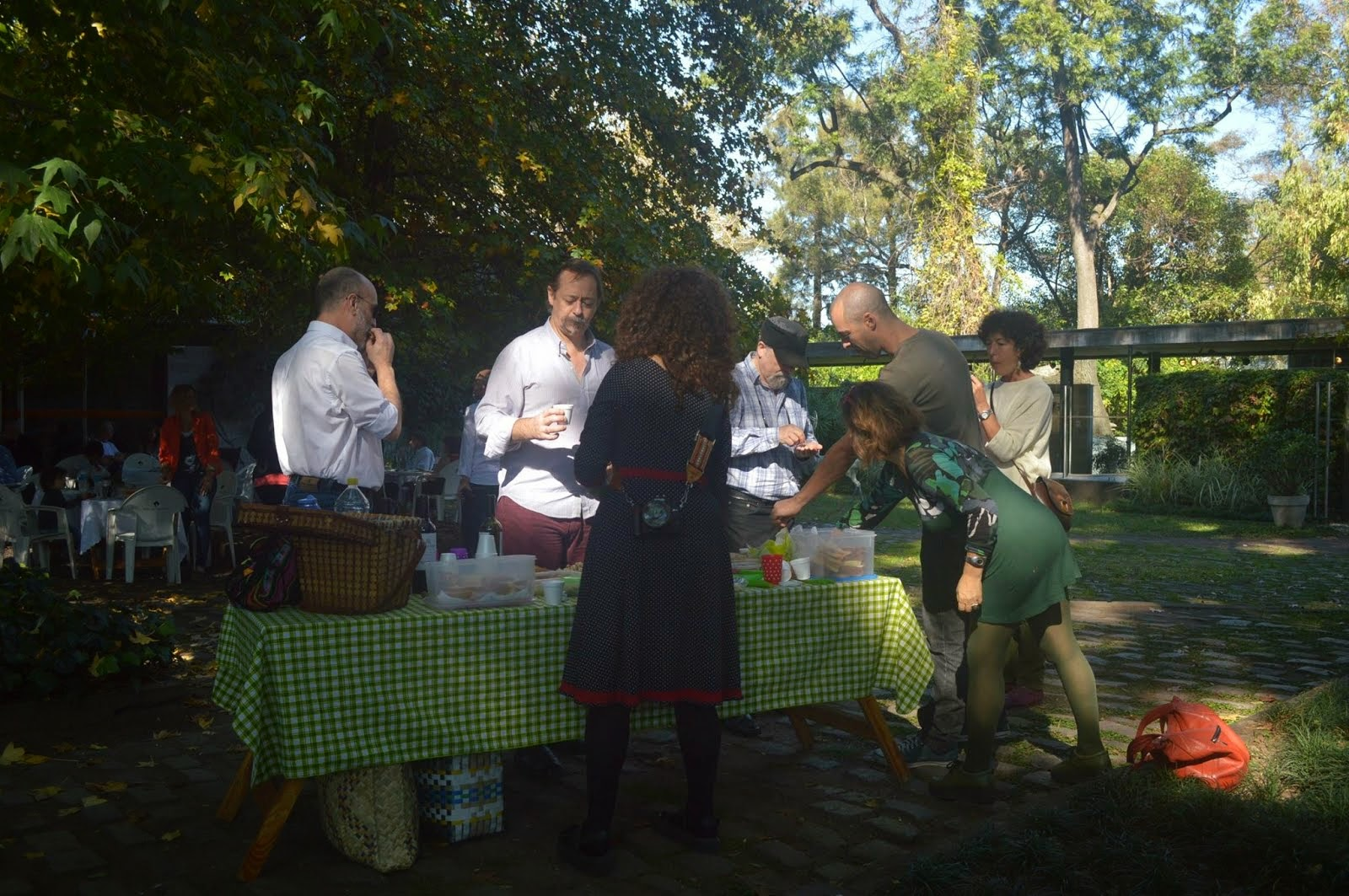 Pic-nic - Buenos Aires - Mayo 2015