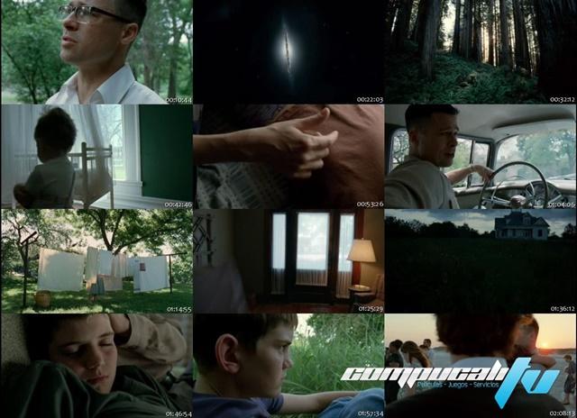 El Arbol de la Vida [The Tree of Life] 2011 DVDRip Latino