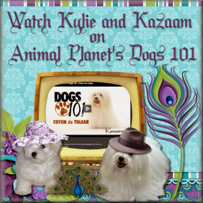 Click Picture to see our dogs on Animal Planet's Dogs 101