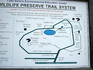 Shoreline Trail Map at Lake Solano County Park