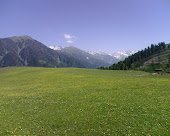 """Shna Dherai"" a scenic place between Kana valley and Lilowni Shangla"